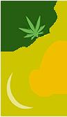 cbd-relief-authority-cbd-logo-sm